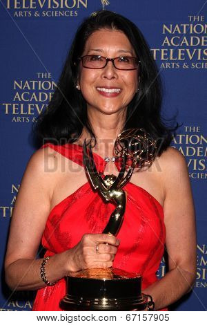 LOS ANGELES - JUN 20:  Christine Lai-Johnson at the 2014 Creative Daytime Emmy Awards at the The Westin Bonaventure on June 20, 2014 in Los Angeles, CA