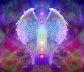 stock photo of soul  - Angel wings and seven chakras on colorful background - JPG