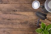 pic of tool  - Gardening tools o wooden background with copy space - JPG