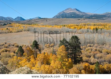 autumn in high sierra