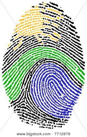 Fingerprint - Nature