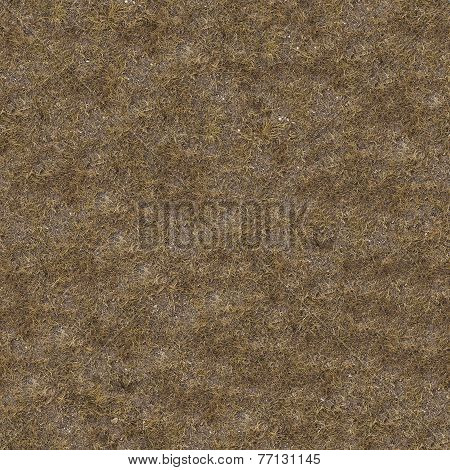 Dried Grass. Seamless Tileable Texture.
