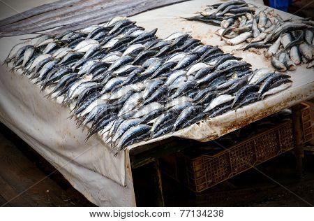 Raw Fish At Moroccan Market