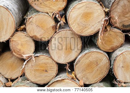 Pile Of Firewood, Photo Of Birch Chocks