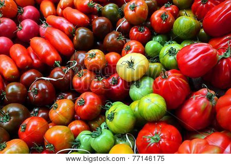 A large spread of uncommon tomatoes
