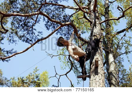 young man climbing on tree with rope