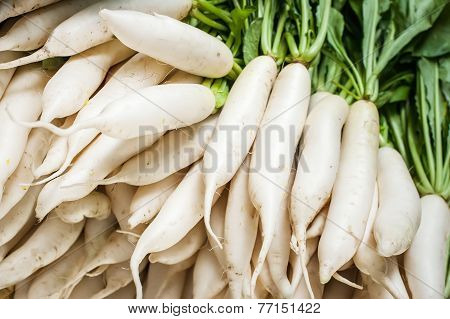Daikon Radish Vegetables At Asian Market