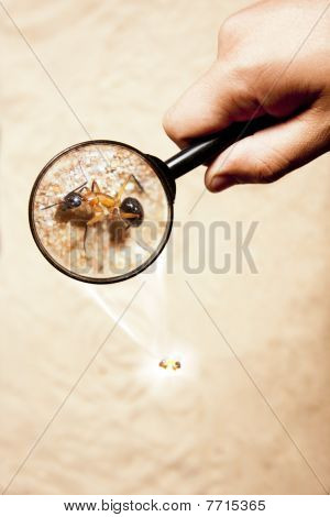 Hand With Magnifying Glass