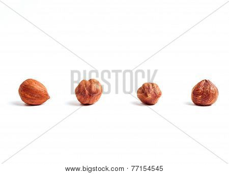 Four filberts