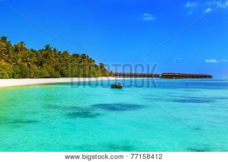 Tropical beach at Maldives - vacation background