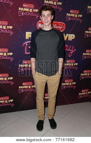 LOS ANGELES - NOV 22:  Shawn Mendes at the Radio Disney's Family VIP Birthday at the Club Nokia on November 22, 2014 in Los Angeles, CA