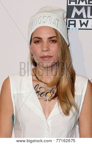 LOS ANGELES - NOV 23:  Skylar Grey at the 2014 American Music Awards - Press Room at the Nokia Theater on November 23, 2014 in Los Angeles, CA