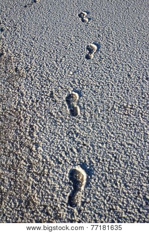 Footsteps On The Salt