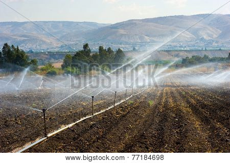 Irrigation In Israel