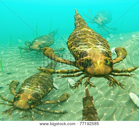 Eurypterids Swimming In A Pack