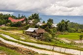 stock photo of west village  - Traditional village with boat shaped roofs in the remote Mamasa Valley West Tana Toraja South Sulawesi Indonesia - JPG