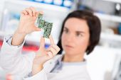 image of microprocessor  - girl student studying electronic device with a microprocessor - JPG