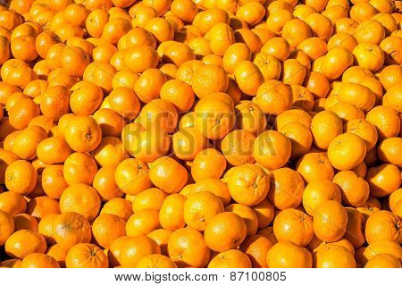 Clementines for sale at a market