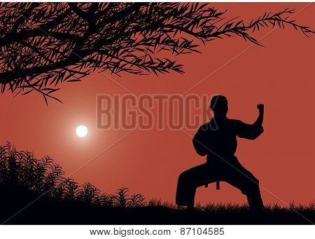 The Man Is Engaged In Karate Against The Sun.