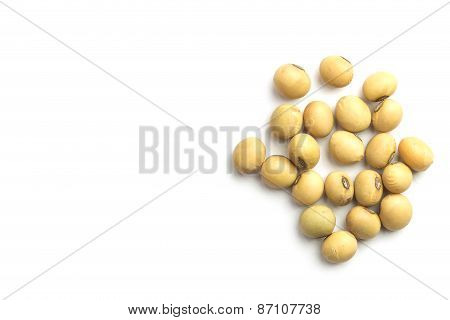 Close Up Soybeans