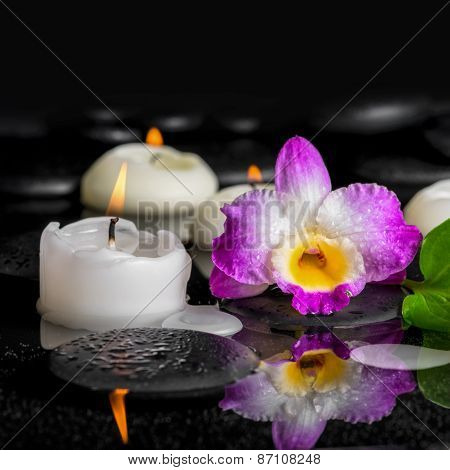 Spa Background Of Purple Orchid Dendrobium And Candles On Black Zen Stones In Reflection Water, Clos
