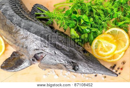 Top Down Of Fresh Raw Sturgeon Fish With Greens, Lemon, Different Peppers And Salt, Closeup