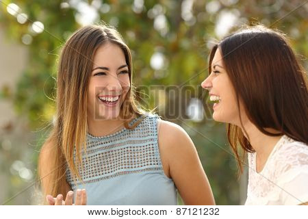 Happy Women Talking And Laughing