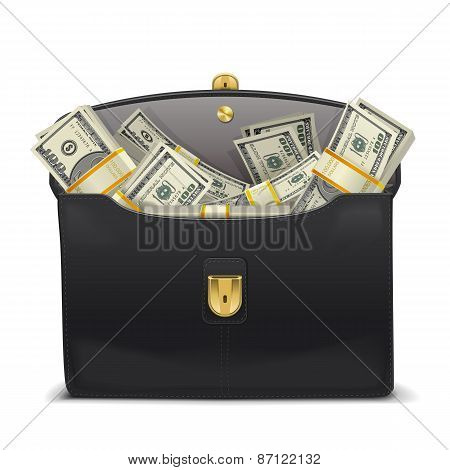Vector Case With Money
