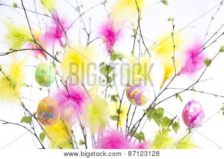 Easter Twigs With Coloured Feathers And Eggs