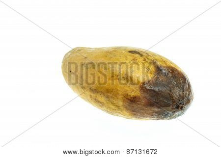 Yellow Rotten Mangoes Isolated On White