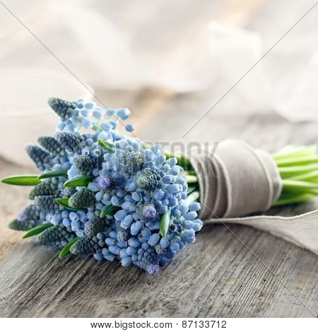 Bouquet Of Muscari Flowers