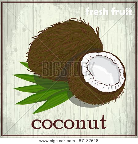 Hand Drawing Illustration Of Coconut. Fresh Fruit Sketch Background