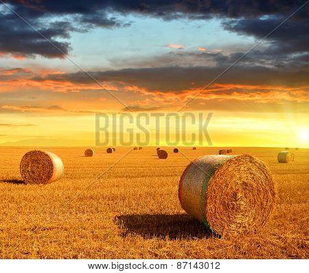 Straw bales on farmland at sunset