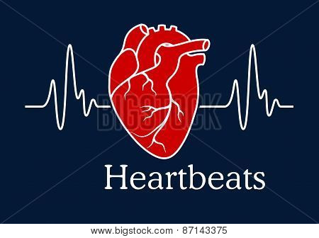 Human heart with white heartbeats cardiogram