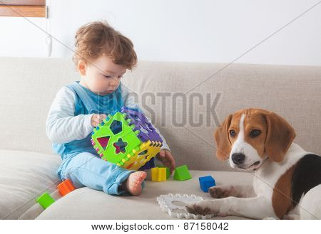 Baby Boy Playing At Home