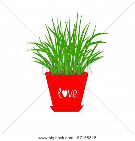 Grass Growing In Red Flower Pot Icon Isolated Love White Background Flat Design