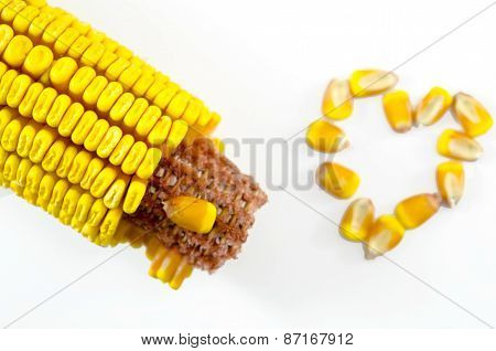 Corn Cob And A Corn Heart Isolated