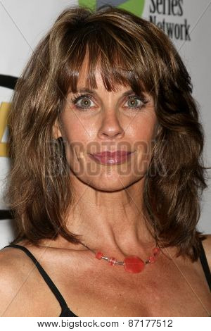 LOS ANGELES - APR 1:  Alexandra Paul at the 6th Annual Indie Series Awards at the El Portal Theater on April 1, 2015 in North Hollywood, CA