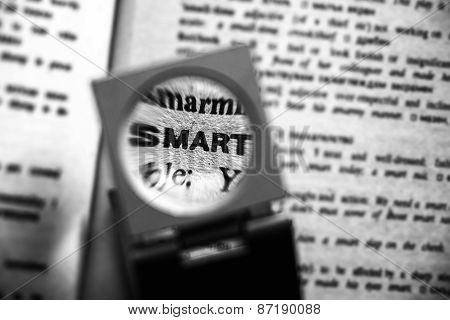 Magnified Word Smart