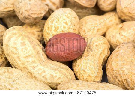 ?eanuts