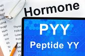 stock photo of hormone  - Papers with hormones list and tablet  with words peptide YY  - JPG