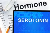foto of hormone  - Papers with hormones list and tablet  with word serotonin  - JPG