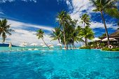picture of infinity pool  - Large infinity swimming pool on the beach with palm trees - JPG