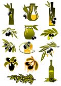 picture of pitcher  - Olive oil design elements showing green leafy branches with ripe black olives fruits and olive oil bottles and pitcher suited for healthy nutrition design - JPG