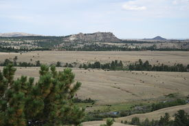 foto of open grazing area  - In the western United States there are many areas that have few fences and alot of open range for cattle grazing - JPG
