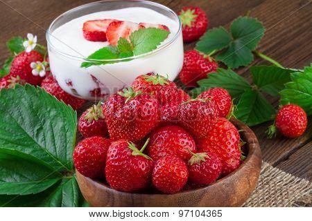 Fresh Strawberry and Yogurt Dessert