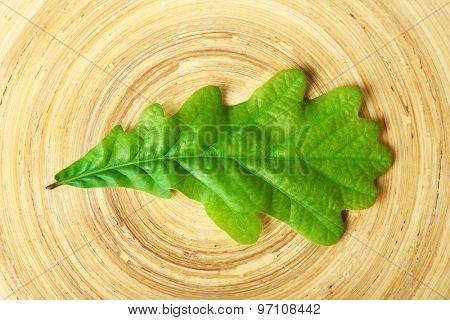 Single green oak leaf on wooden background