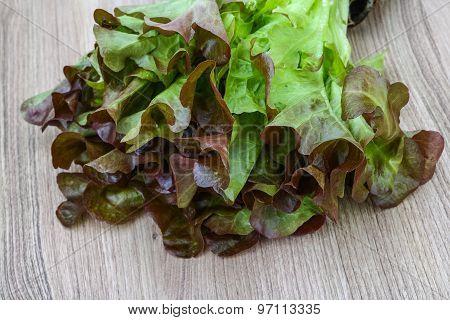 Oak Salad