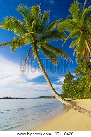 Serenity Shore Idyllic Island
