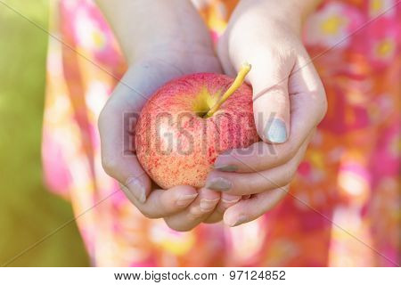 A young girl holding a gala apple.